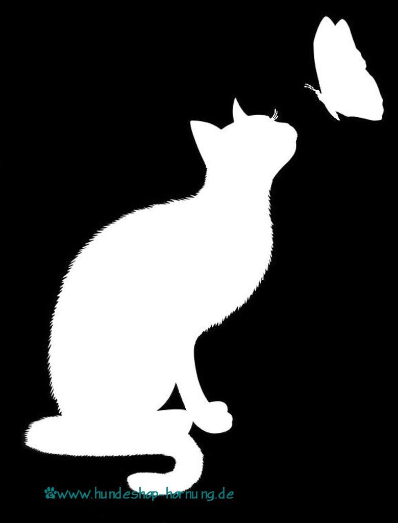 gehts katzen besser nach zahnreinigung